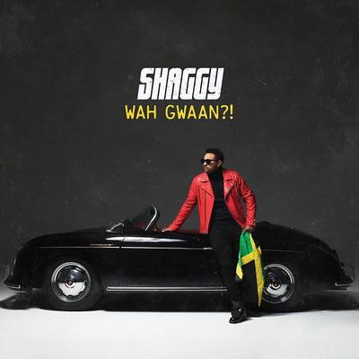 Шэгги выпустил первый сольный альбом за шесть лет (Слушать)