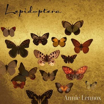 Энни Леннокс выпустила инструментальный альбом про бабочек (Слушать)